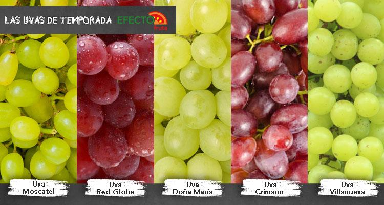 Efecto fruta conoce las variedades de uvas de la temporada - Variedades de uva de mesa ...