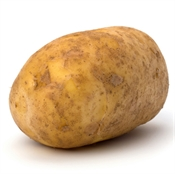Imagen de Patata común