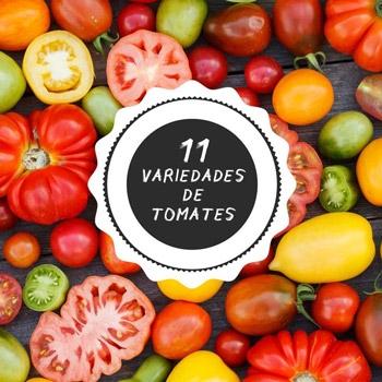 Imagen de la categoría Tomates