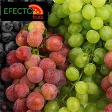 Imagen de la categoría Conoce las variedades de uvas de la Temporada