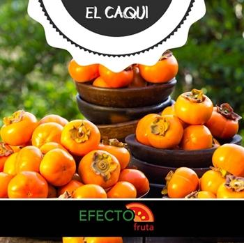 Imagen de la categoría Frutas de otoño: El dulce Caqui o Kaki.