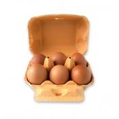 Imagen de Huevos Camperos 1/2 docena