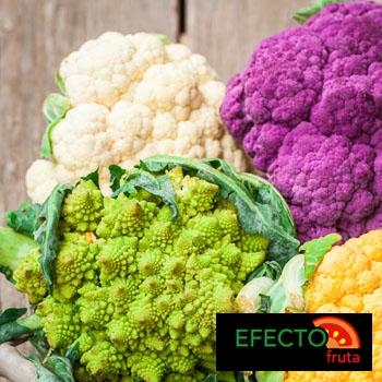 Imagen de la categoría La gran familia de las coles.          (Coliflor, Brócoli, Romanescu y coliflor morada)