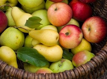Imagen de la categoría Los beneficios de las manzanas y las peras