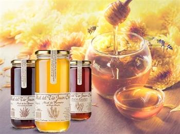 Imagen de la categoría Los usos medicinales de la miel
