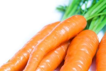 Imagen de la categoría Nutrición -  Alimentos con más vitamina A