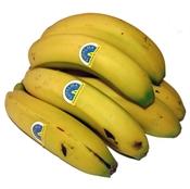 Imagen de Plátanos de Canarias