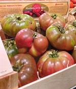 Imagen de Tomate montañés de la Galia